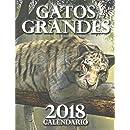 Gatos Grandes 2018 Calendario (Edición Españ ...