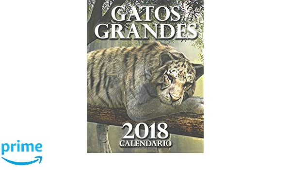Gatos Grandes 2018 Calendario (Edición España) (Spanish Edition): Wall Publishing: 9781973919070: Amazon.com: Books