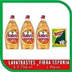 Salvo Salvo Lavatrates Líquido Concentrado 750ml 3 Unidades, Total 2.25lts + Esponja, Pack of 1
