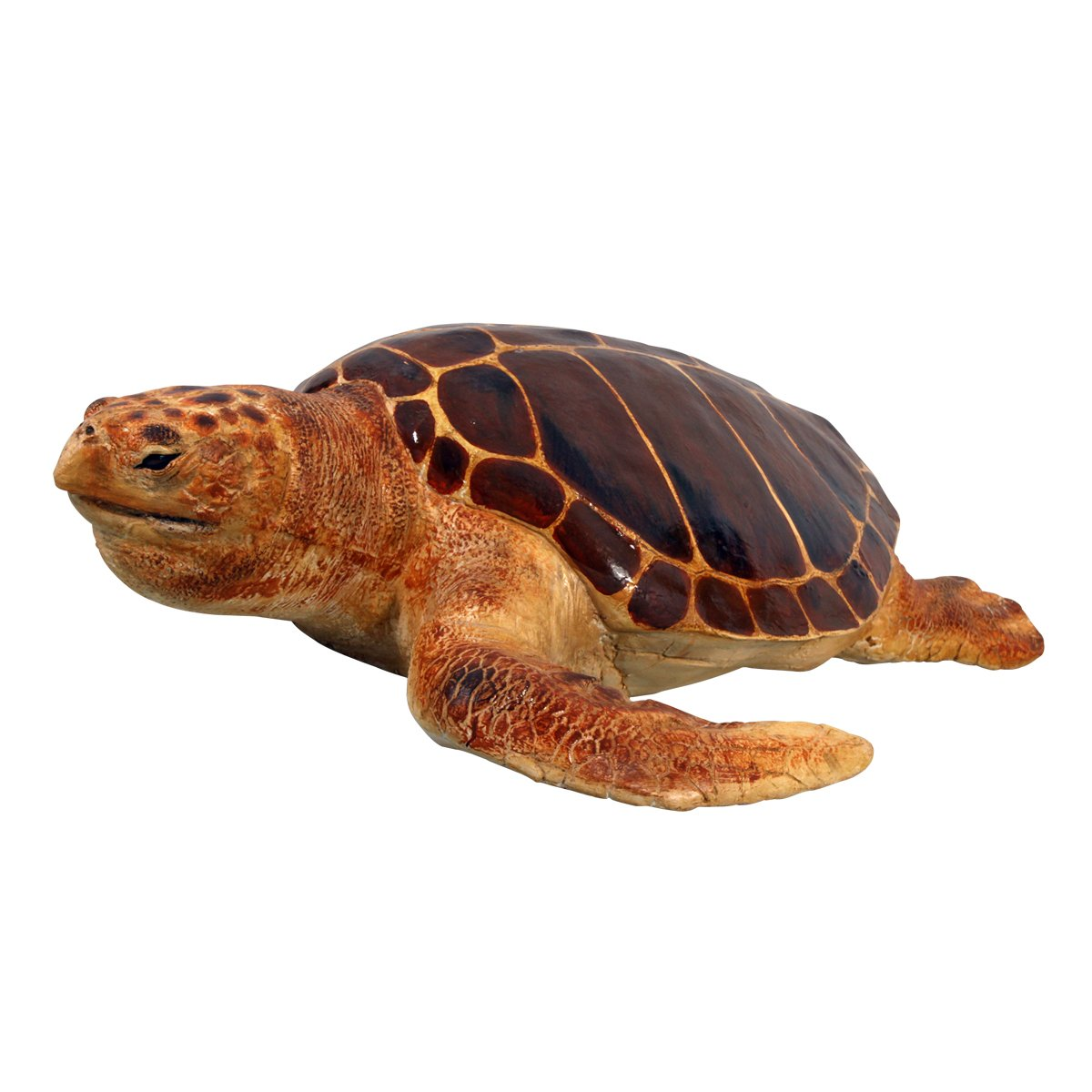 Amazon.com : Design Toscano Giant Loggerhead Sea Turtle Statue : Outdoor  Statues : Garden U0026 Outdoor