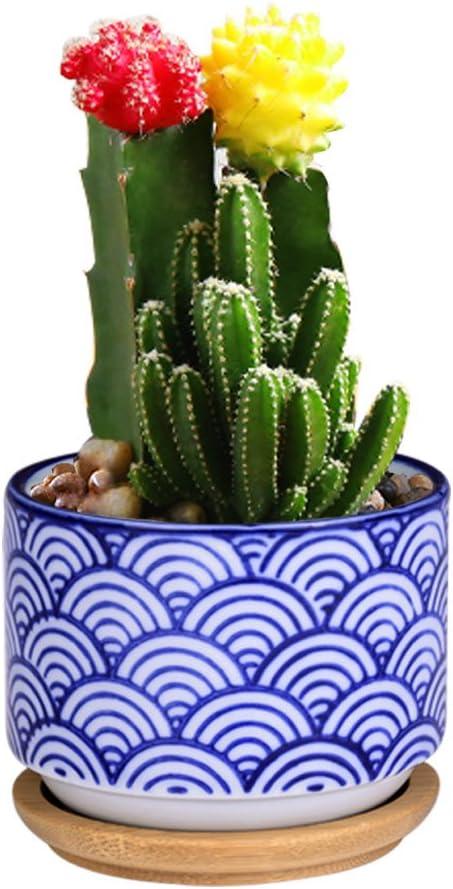 Succulent Pot Cactus Pot Cactus Planter Ceramic Planter pots for Cacti Plants,Japanese Style Bonsai, Blue Waves, Classical Chinese Elements, Office Learning Table Decor, Pot 2.4×3.2