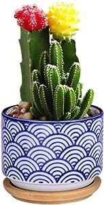 "Succulent Pot Cactus Pot Cactus Planter Ceramic Planter pots for Cacti Plants,Japanese Style Bonsai, Blue Waves, Classical Chinese Elements, Office/Learning Table Decor, Pot 2.4x3.2"""