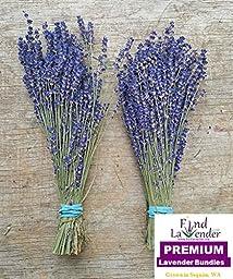 Findlavender - Culinary Lavender Bundles - 14\