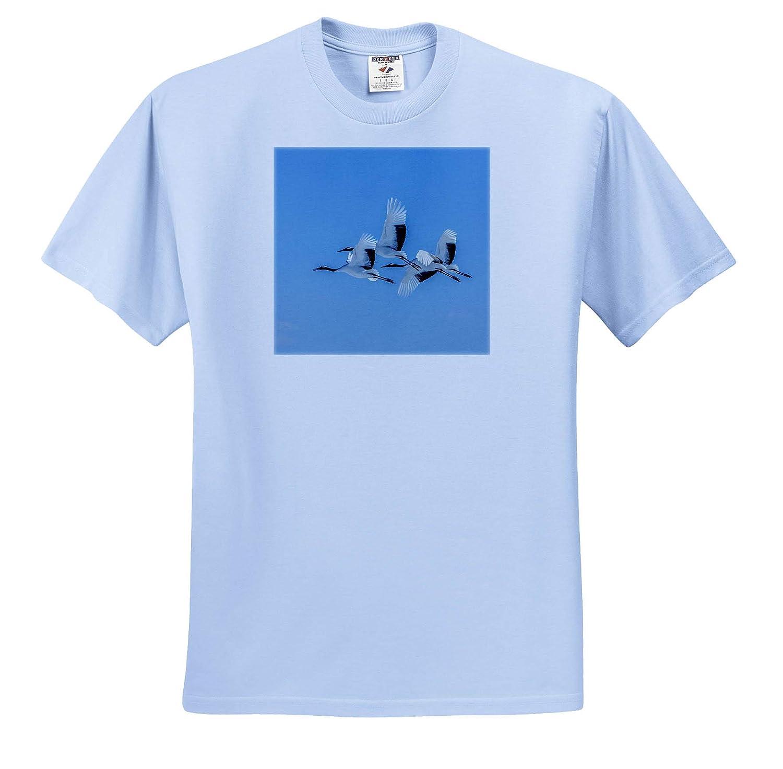 3dRose Danita Delimont ts/_312760 Crane Japanese Cranes Flying Japan Hokkaido - Adult T-Shirt XL