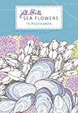 img - for Sea Flowers: 15 Postcards book / textbook / text book