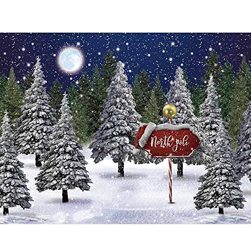 Allenjoy Winter Snowing Night Landscape Forest Backdrop Christmas Wonderland North Pole Moon Snowflake Snow Scene Pine Kids Newborn Photo Booth Props Baby Shower 10x8ft Photography Background (Photos Christmas Landscape Winter)