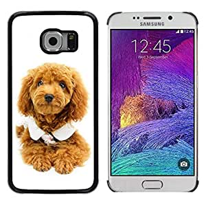 Be Good Phone Accessory // Dura Cáscara cubierta Protectora Caso Carcasa Funda de Protección para Samsung Galaxy S6 EDGE SM-G925 // Cute Puppy Dog Poodle