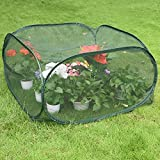 Sundale Outdoor Portable Gardening Green House Mini Lightweight Greenhouse with Polypropylene Mesh, Fireproof, Insect Prevention, 39.4''(L) x 39.4''(W) x 19.7''(H), Green