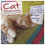 Cat Shaming 2017 Wall Calendar