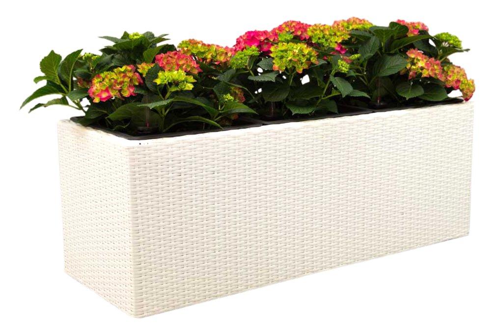Blumentrog Pflanztrog Raumteiler Trennelement Polyrattan Rechteck LxBxH 106x38x38cm weiß