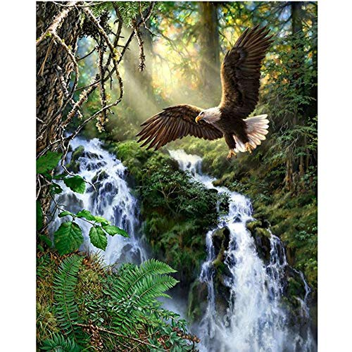 DMC Thread Counted Cross Stitch Kits for Beginners Eagle and Waterfall 14CT Aida Cloth Needles Home Wall Decor (Eagle and Waterfall)