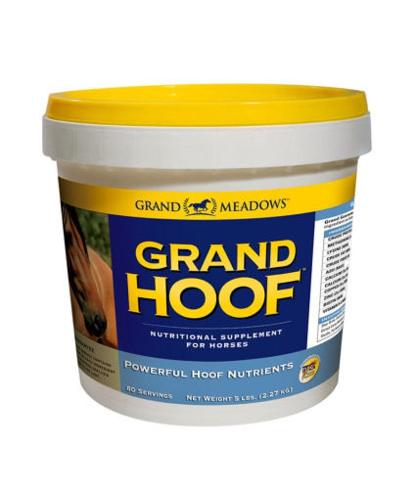 Grand Hoof Horse Biotin Amino Acids Maple Flavored Powdered Supplement 5 lbs by Grand Meadows