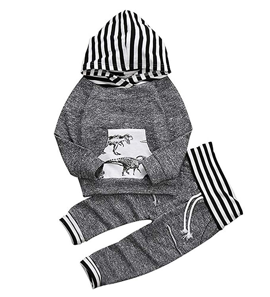 Toddler Infant Baby Boys Outfit Set Deer Dinosaur Sweatsuit Long Sleeve Hoodie Tops Pants 2 Piece Clothes Set Popshion