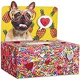 Valentines Day Mailbox Decorating Kit Pineapple Sprinkle Dog