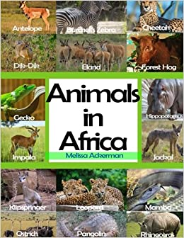 Animals In Africa A Picture Book For Kids To Learn African Animals