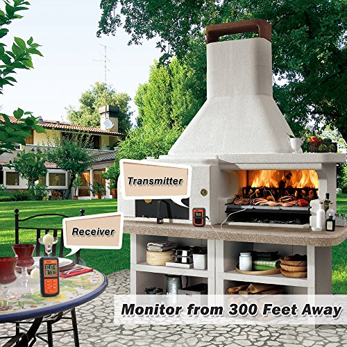 ThermoPro-TP07-Remote-Wireless-Digital-Kitchen-Cooking-Food-Meat-Thermometer-with-Timer-for-BBQ-Smoker-Grill-Oven-300-Feet-Range