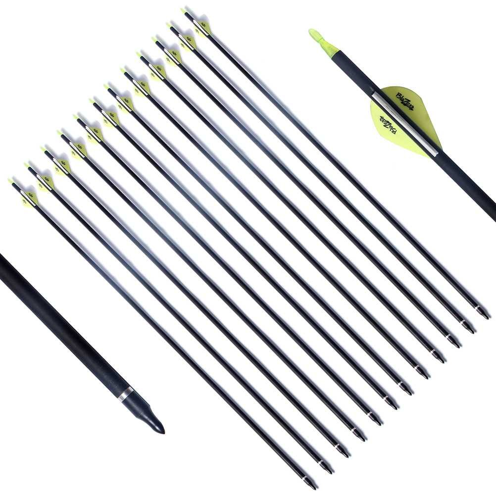 PG1ARCHERY Archery Target Carbon Arrows, 30 inch Practice Arrow 2'' Fletched Vanes with Removable Field Points Tips for Hunting (Pack of 12) White Green