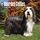 Bearded Collies Dog Wall Calendar 2018 CUTE {jg} Best Holiday Gift Ideas - Great for mom, dad, sister, brother, grandparents, grandchildren, grandma, gay, lgbtq.