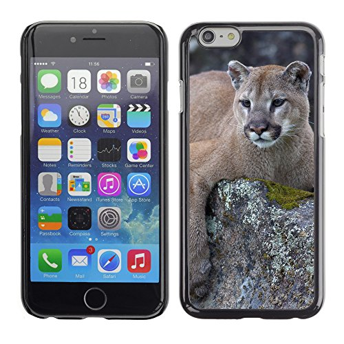 Premio Sottile Slim Cassa Custodia Case Cover Shell // V00002210 Lion de montagne // Apple iPhone 6 6S 6G 4.7""
