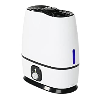 Everlasting Comfort Ultrasonic Cool-Mist Humidifier