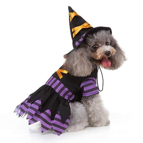 POPETPOP Disfraz de Bruja para Perros: Disfraces de ...