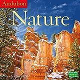 Audubon Nature Wall Calendar 2019