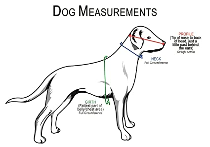 amazon muffin s halo blind dog harness guide device help for Blind Dog Helmet amazon muffin s halo blind dog harness guide device help for blind dogs or visually impaired pets to avoid accidents build confidence ideal