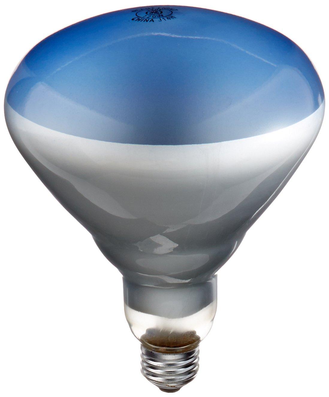 Rayvern Lighting Supply