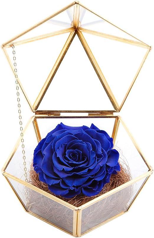 Te Amo Gemelos Nuevo En Te Amo Caja Día de San Valentín Boda Cumpleaños Regalo Idea