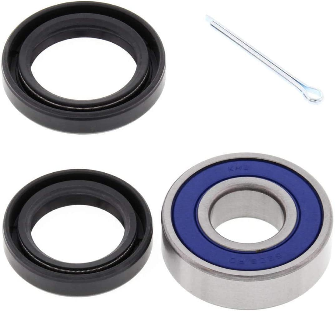 Compatible con TRX 300-350-400-420-450- Kit de rodillos ...