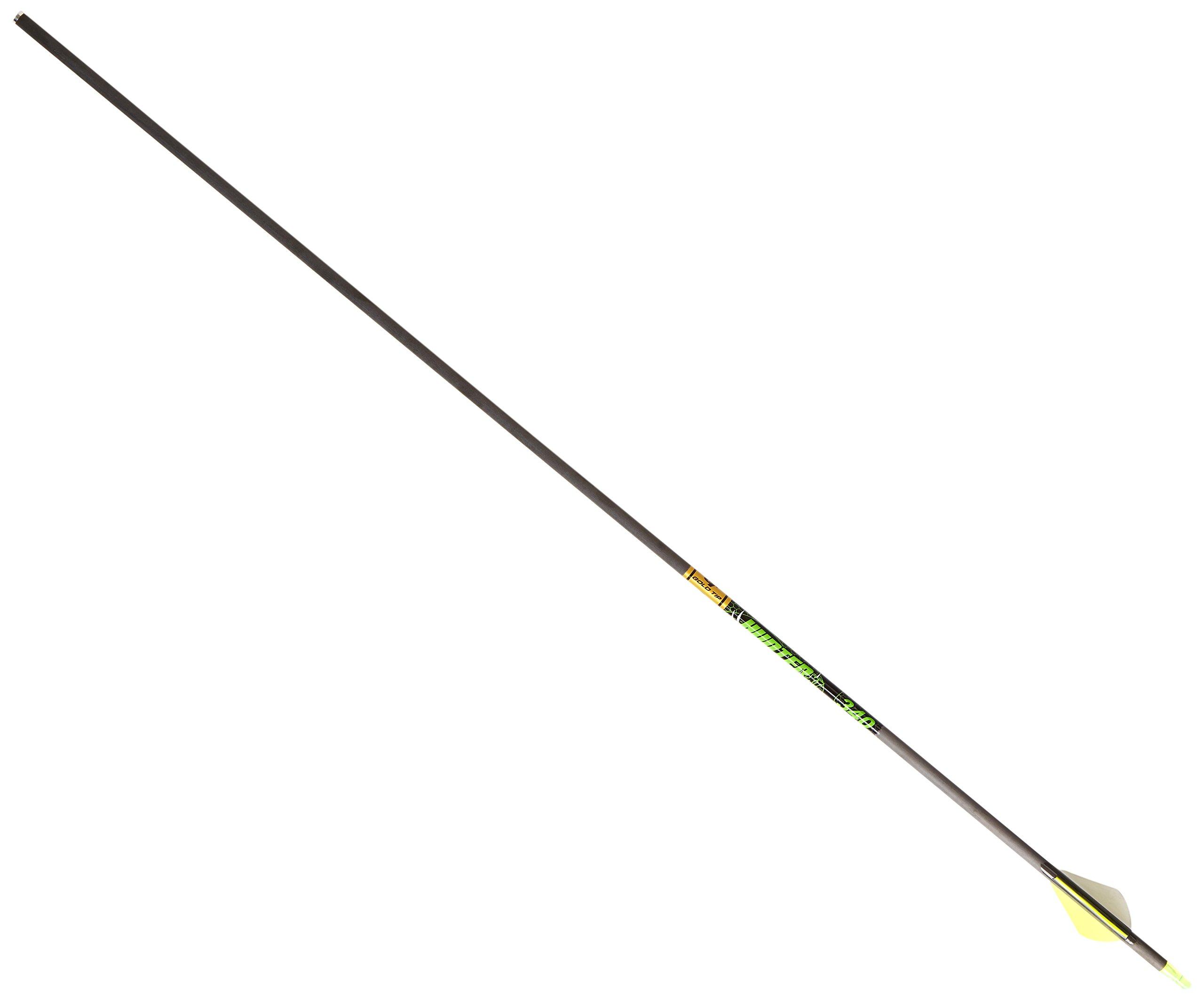 Gold Tip Hunter XT Arrows with Raptor Vane (Pack of 6), Black, 300
