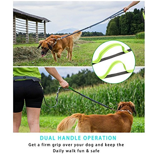 PetExpert Hands Free Dog Leash with Strong Bungees Running Dog Leash Dog Walking Leash with Two Handles for All Sizes Dogs Fit Up to 42'' Waist