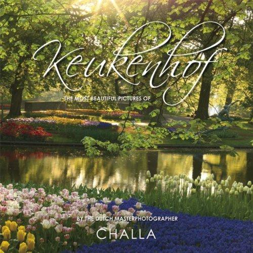 Keukenhof / druk 1: prachtige sfeerfoto's van de Keukenhof, gemaakt door kunstenaar-dichter-fotograaf -