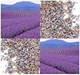 Lavender Flower Buds # 2 - Extra Standard Botanical Grade - For Making SACHETS - WEDDING FAVOR - POTPOURRI (08.0 oz - 8 oz)