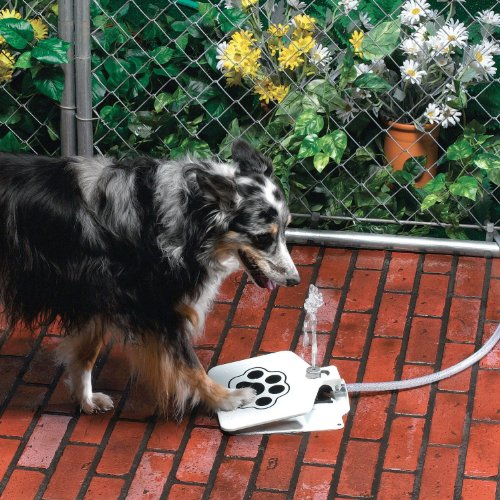 sporer-pet-supplies-upgrade-dog-step-spray-paw-water-fountain-feeder-drinking-spring-pedal-water-fee