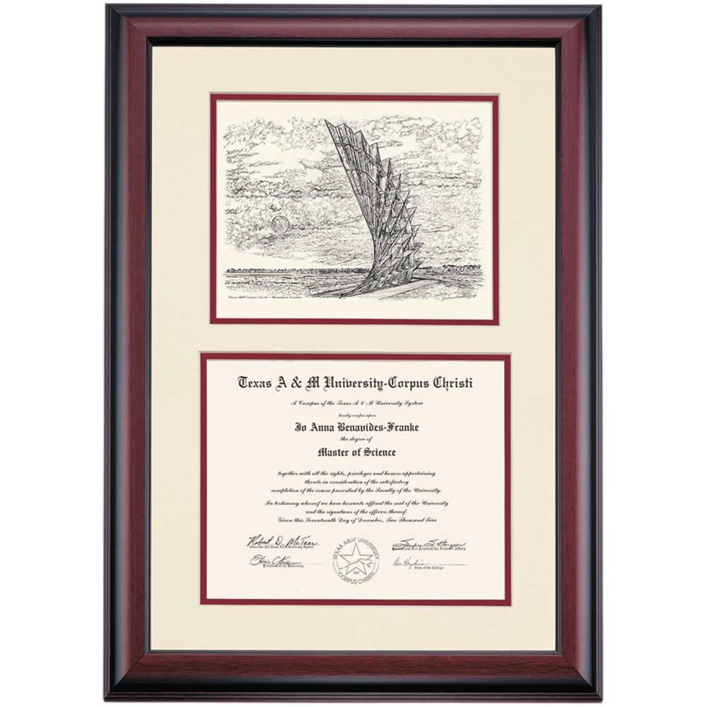 Amazon.com - Texas A&M Corpus Christi TAMUCC Islanders Diploma Frame ...