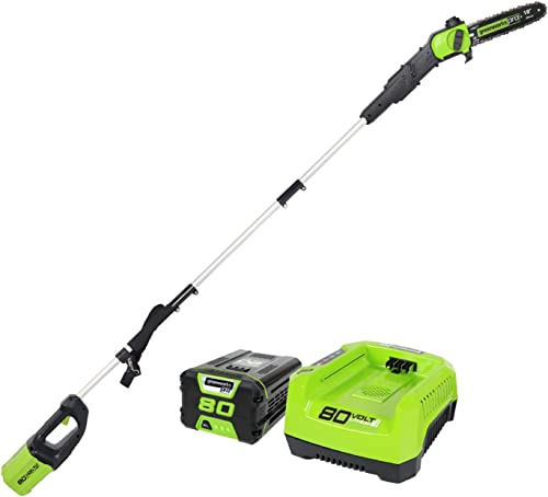 Greenworks PRO 80V 10 Brushless Cordless Polesaw, 2.0Ah Battery and Charger Included PS80L210