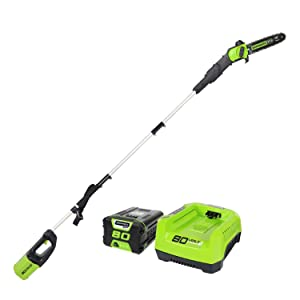 Greenworks PRO 10' 80V Cordless Pole Saw, 2.0 AH Battery Included PS80L21