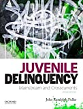 img - for Juvenile Delinquency: Mainstream and Crosscurrents book / textbook / text book