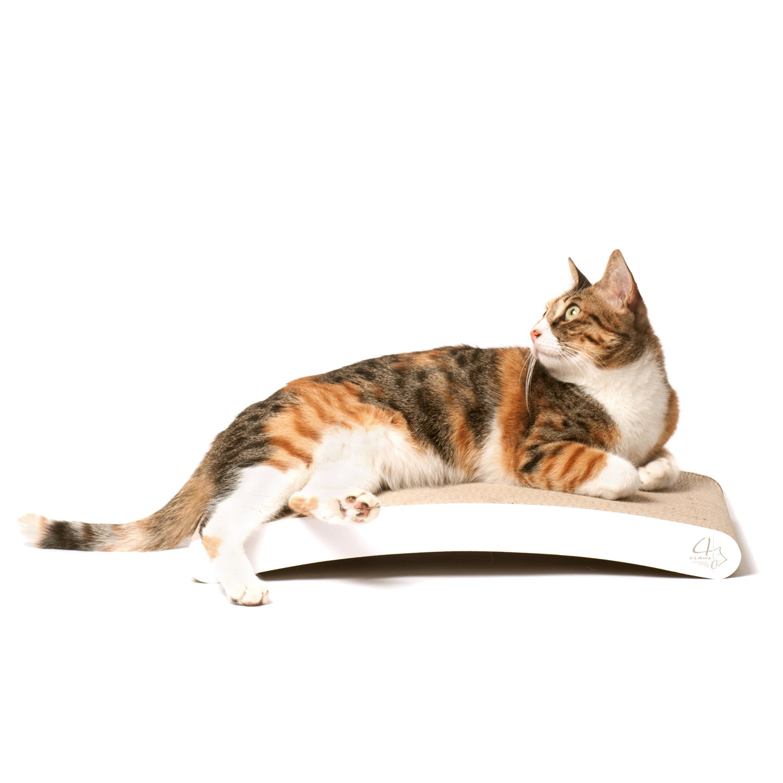 Trendia Cat Itcher Brush Lick Cat Brush Pet Dog Cat Massage Hair Remover Brush Useful Massage Brush Pad
