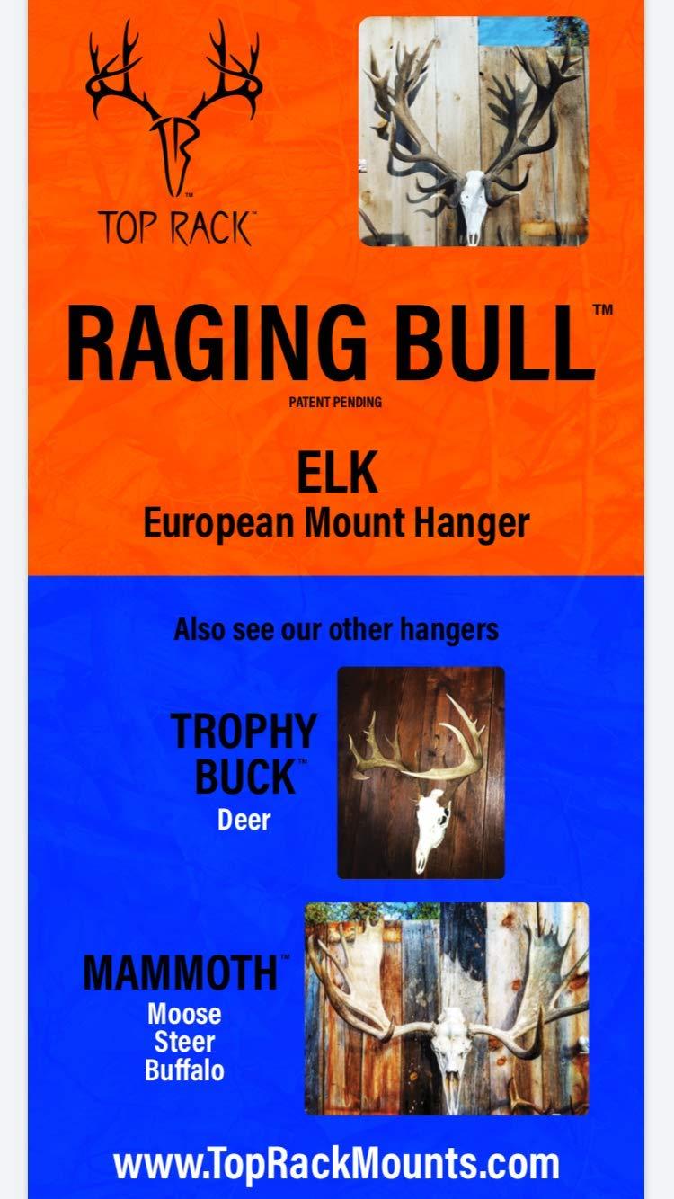 Top Rack Raging Bull European Mount Hanger