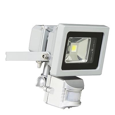 Ranex XQ1162 Projecteur 1 LED 10 W - 750 Lumens avec Détecteur de Mouvement Aluminium Verre Gris
