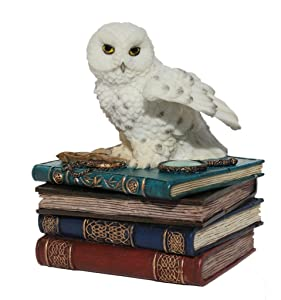 US 4.75 Inch Snow Owl Flap Wings on Books Trinket Box, White Color