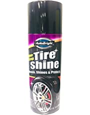 Gastro Club Compatible with Tire Shine Diversion Safe Stash Can