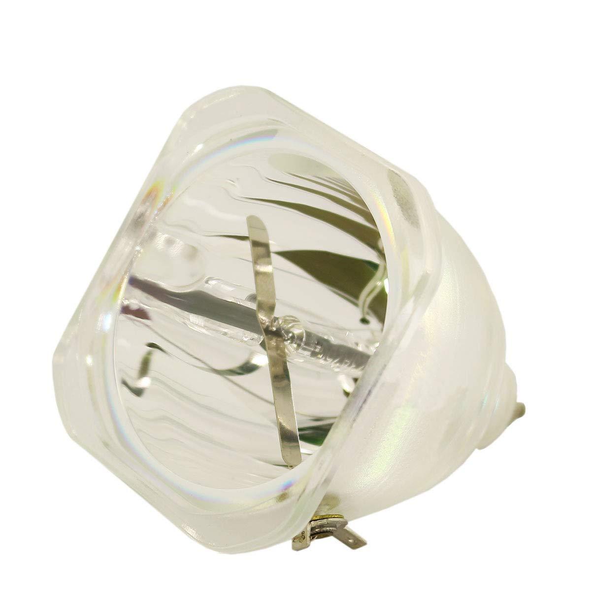 LYTIO エコノミー Dell 310-3836プロジェクターランプ(電球のみ) 310 3836   B07JJ37Y7J