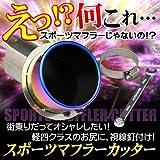 SilkBlaze シルクブレイズ マフラーカッター 左右セット オーバルタイプ/シルバー 【18系クラウン】 SB-CUT-030-S