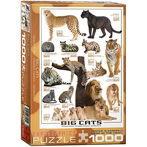 EuroGraphics Big Cats 1000 Piece Puzzle