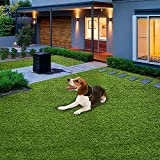 Home Cal Artificial Grass Rug Series Landscape Outdoor Decorative Synthetic Turf Pet Dog Area 3cm Autumn Grass 6'x10'