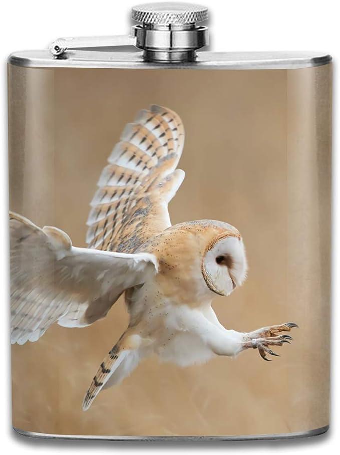 Lechuza en vuelo antes del ataque Animal Wildlife Nature Gift ...