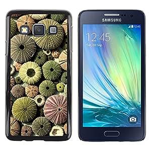 Pulsar Snap-on Series Teléfono Carcasa Funda Case Caso para Samsung Galaxy A3 , Désert Motif Green Plant Sun